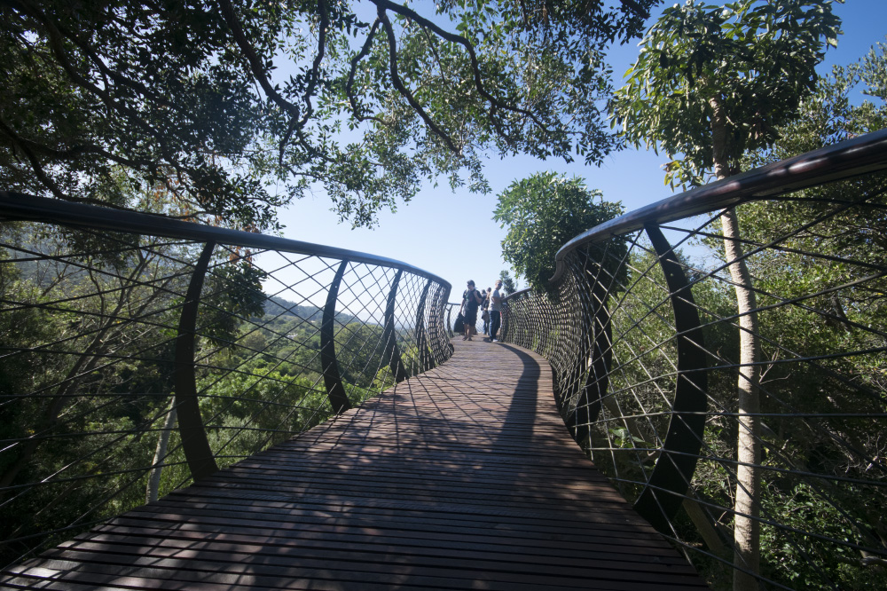 follow the path